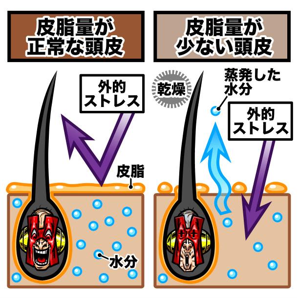 皮脂量が少ない頭皮と正常な頭皮の比較イラスト