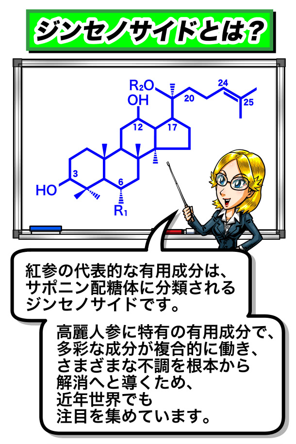 ジンセノサイドの成分