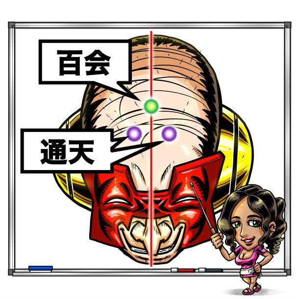 百会(ツボ)の紹介イラスト